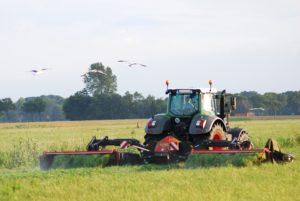 Arbeitskräfte Agrargenossenschaft Liebenau eG